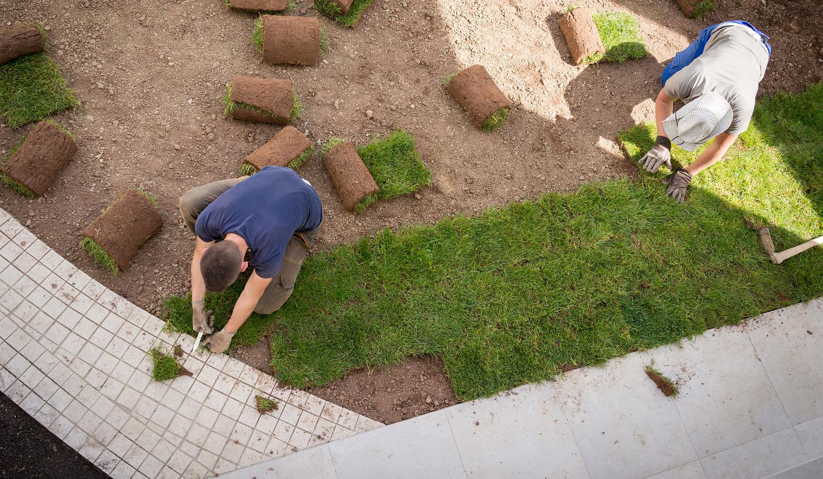 Plen som du ruller ut i hagen og vips har du ny hage
